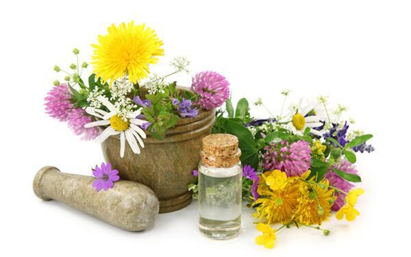 Klimakterium na zielono. Zioła łagodzą objawy menopauzy